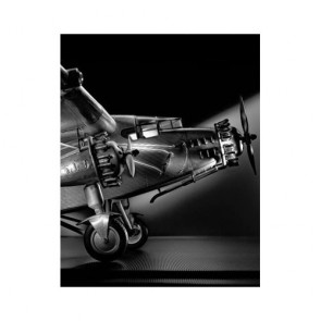 Ford Tri Motor Plane Ornament by AM Living