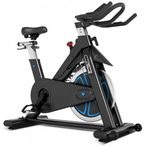 Lifespan Fitness SP-870 (M3) Spin Bike