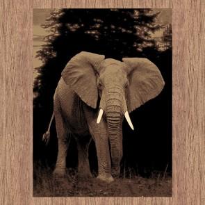 Ruby 6325 Elephant